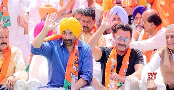 gurdaspur  sunny deol  election expenses