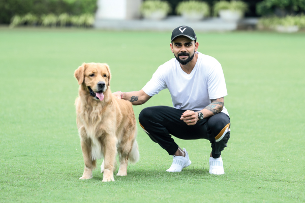 virat kohli was elected peta india  s   person of the year