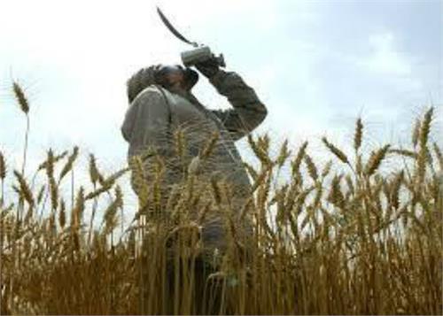 nairobi conference modi government loses the case of farmers rajewal