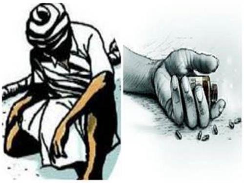 3 farmers suicides in marathwada