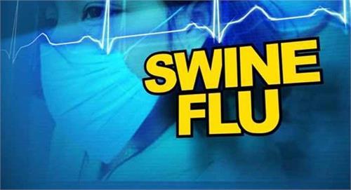15 deaths from swine flu this year in aurangabad