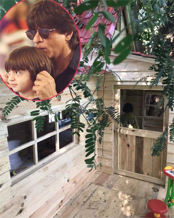 shah rukh khan and abram khan tree house