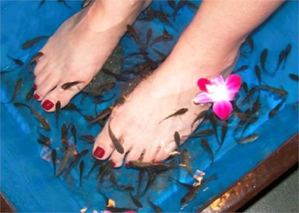woman loses toenails after a fish pedicure