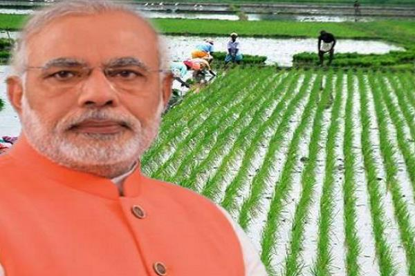 pm farmers honor 3 out of 4 farmers lose rs 2000 cash