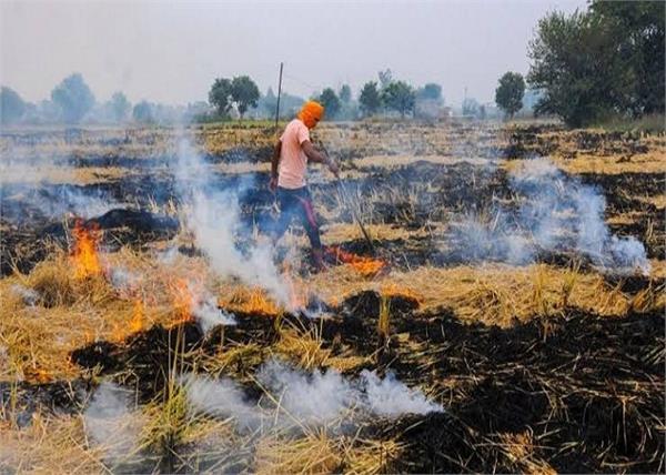 stubble burning farmers fir