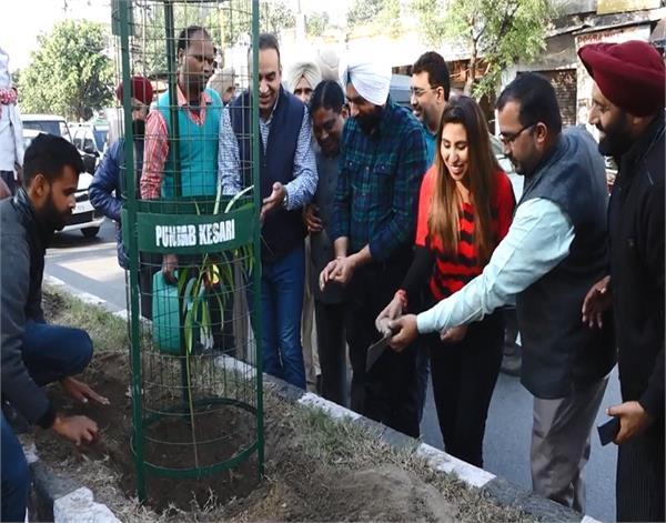 amritsar  punjab kesari  environment