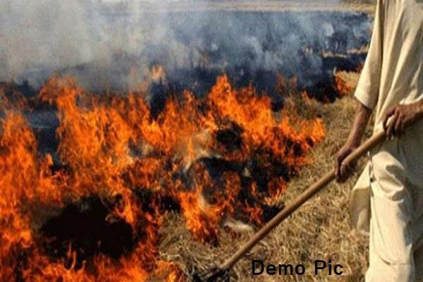 bathinda  straw fire  48 farmers  fir