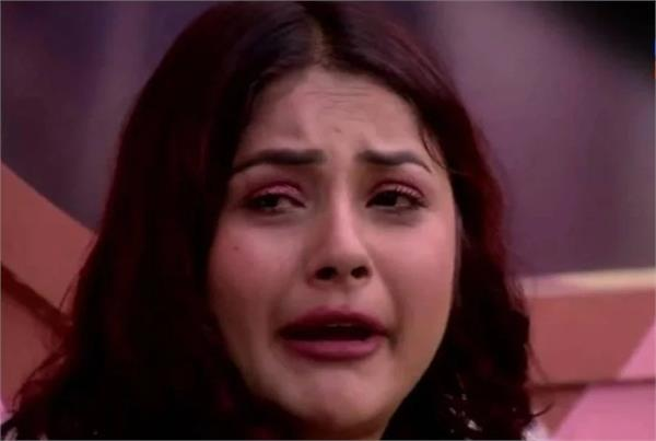 bigg boss 13 shehnaz vishal arhaan slapped in weekend ka vaar