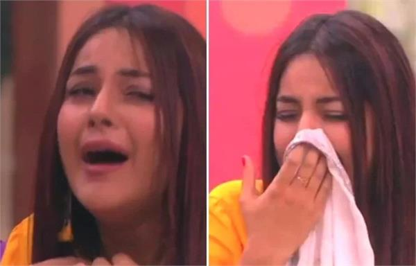 bigg boss 13 when shehnaz kaur gill crying in front of salman khan