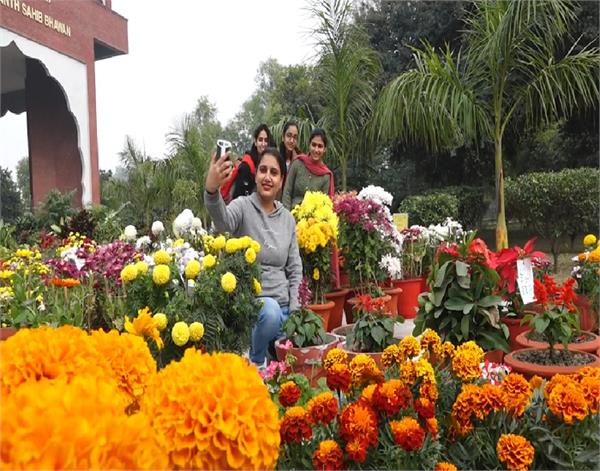 amritsar  guru nanak dev university  natural flowers