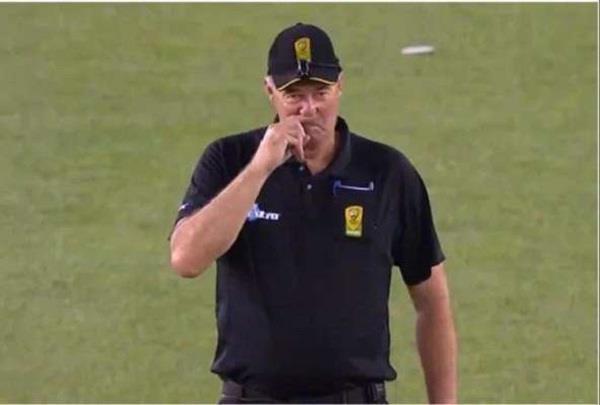 bowler appeals out umpire knocks finger video