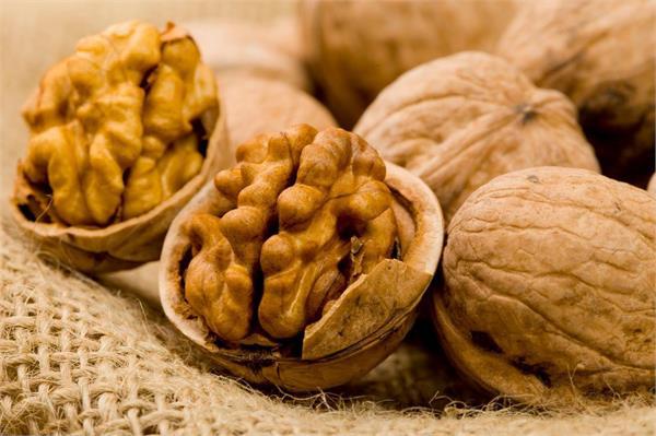 wallnut in good for brain
