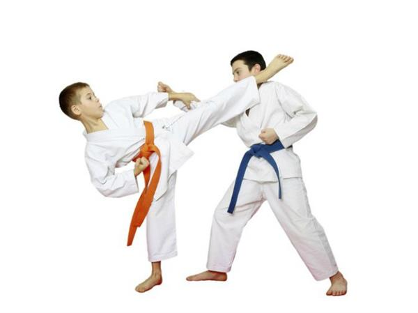karate  host lucknow