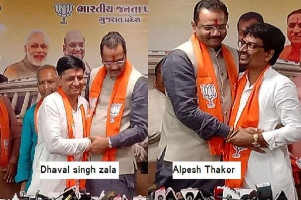 alpesh thakor and dhaval zala join bjp