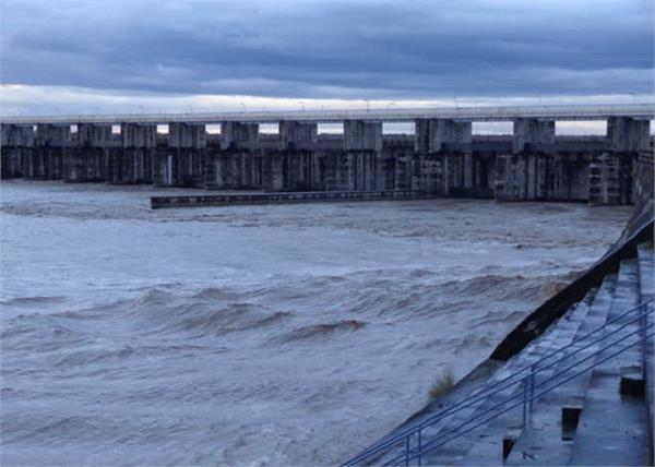 hathnikund barrage water level
