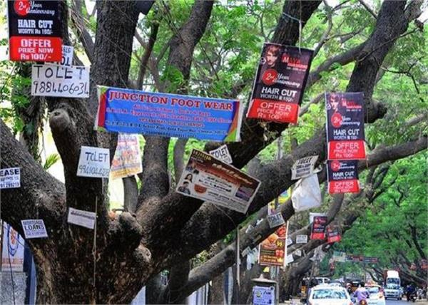 chennai tree in light and hoardings