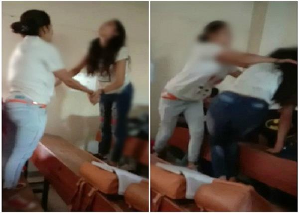 maharana pratap college students fighting video viral