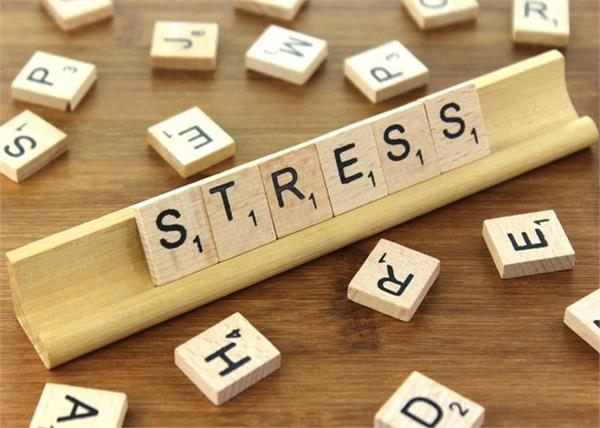 94  of middle school teachers live in high stress