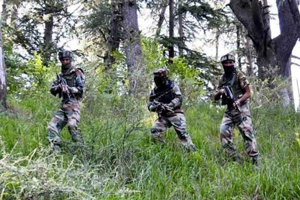 terrorists are now using   gelatin   to target security forces