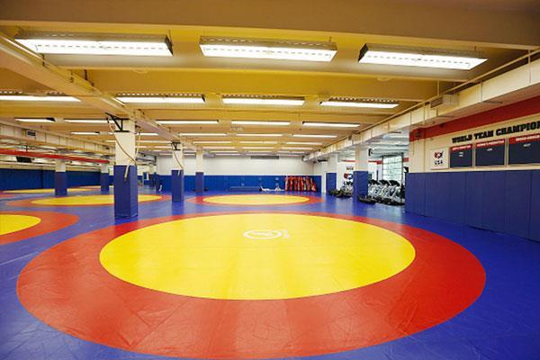 pinky wins gold in asian wrestling championships