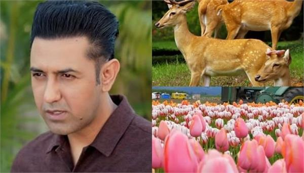 gippy grewal shared his new video sukh tan hai