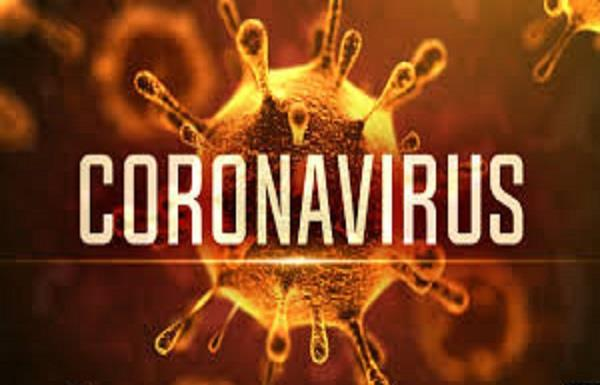 curfew pass  corona  fight